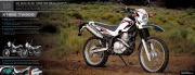 2010 Yamaha Motocross Off Road YZ250 450 YX28 125 WR250 450 TTR50 110 230 PW50 WR250 XT250 TW200 Brochure, 2010 page 9